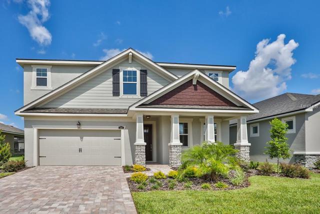 11614 Blue Woods Drive #158, Riverview, FL 33578 (MLS #T3105666) :: The Duncan Duo Team