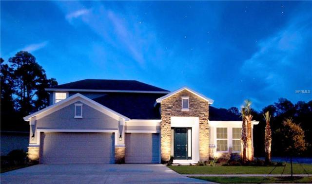 27266 Hawks Nest Circle, Wesley Chapel, FL 33544 (MLS #T3106142) :: The Duncan Duo Team