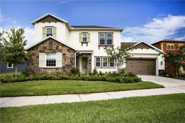 13217 Fawn Lily Drive, Riverview, FL 33579 (MLS #T3107237) :: The Duncan Duo Team