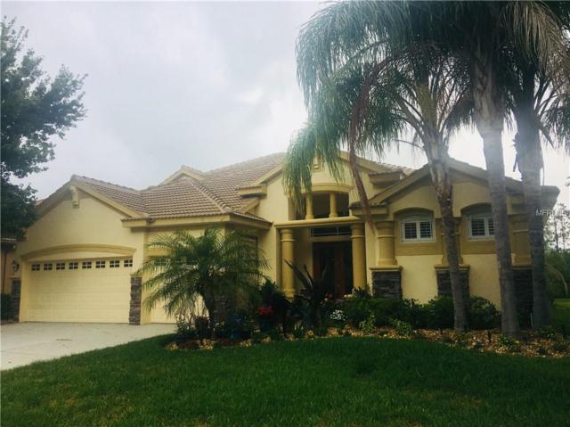 11340 Biddeford Place, New Port Richey, FL 34654 (MLS #T3107503) :: The Lockhart Team