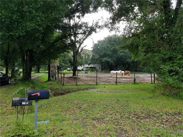 5614 Watson Road, Riverview, FL 33578 (MLS #T3107924) :: Carmena and Associates Realty Group