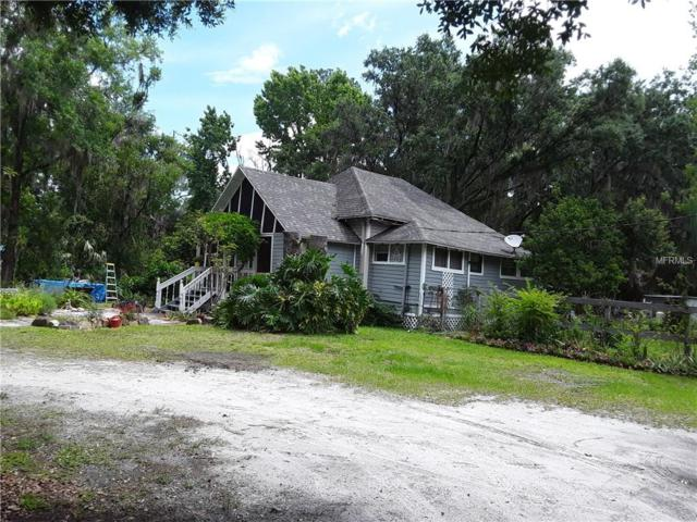 Address Not Published, Dover, FL 33527 (MLS #T3108043) :: The Duncan Duo Team