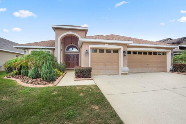 15611 Starling Water Drive, Lithia, FL 33547 (MLS #T3109251) :: The Duncan Duo Team