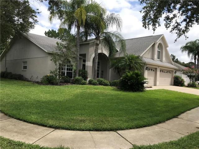 10202 Thicket Point Way, Tampa, FL 33647 (MLS #T3109655) :: Team Bohannon Keller Williams, Tampa Properties