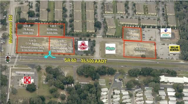 3472 E 60TH Highway, Valrico, FL 33594 (MLS #T3110072) :: Team Borham at Keller Williams Realty