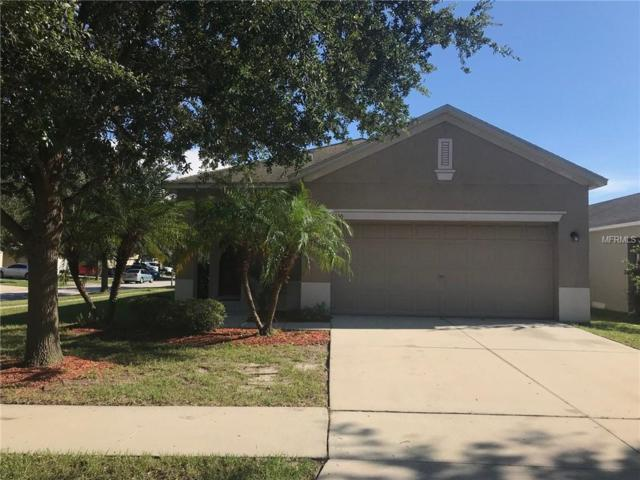 8560 Deer Chase Drive, Riverview, FL 33578 (MLS #T3110115) :: The Duncan Duo Team