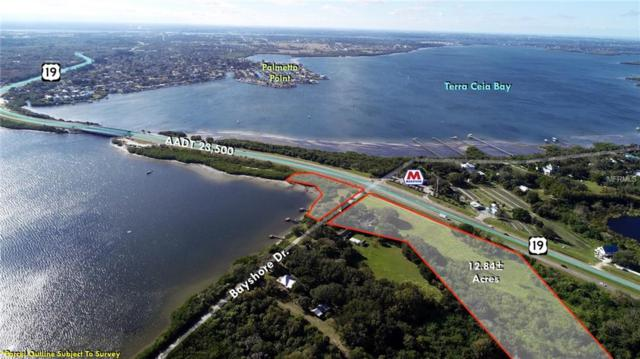 320 Bayshore Drive, Terra Ceia, FL 34250 (MLS #T3110142) :: Zarghami Group