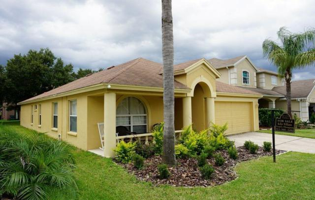 Address Not Published, Wesley Chapel, FL 33544 (MLS #T3110263) :: The Duncan Duo Team