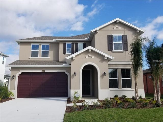 28871 Revaro Lane, Wesley Chapel, FL 33543 (MLS #T3111361) :: The Duncan Duo Team