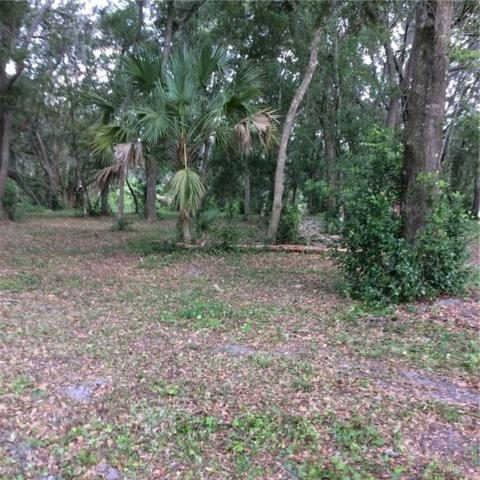Whitaker Road, Lutz, FL 33549 (MLS #T3111473) :: Lovitch Realty Group, LLC