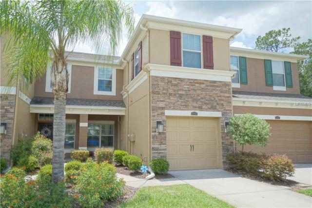 12478 Streamdale Drive, Tampa, FL 33626 (MLS #T3111877) :: The Duncan Duo Team