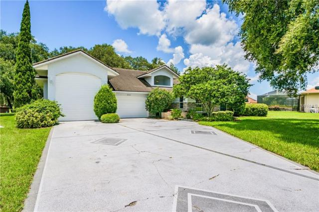 6241 Huntington Drive, Zephyrhills, FL 33542 (MLS #T3112361) :: Burwell Real Estate