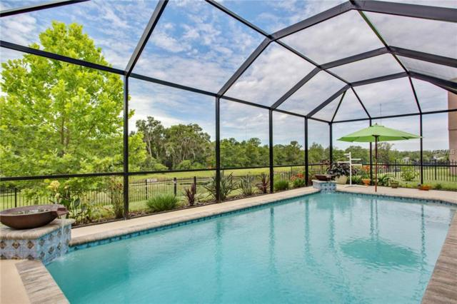 14720 Heronglen Drive, Lithia, FL 33547 (MLS #T3112362) :: The Duncan Duo Team