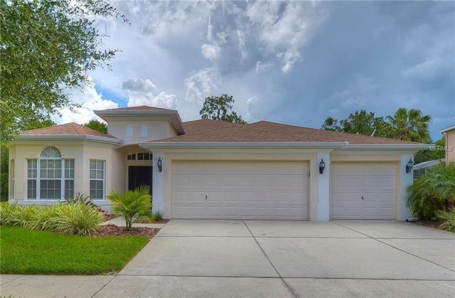16125 Bridgepark Drive, Lithia, FL 33547 (MLS #T3113211) :: The Duncan Duo Team