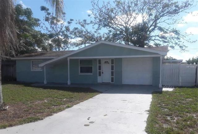 4742 Darlington Road, Holiday, FL 34690 (MLS #T3113267) :: Premium Properties Real Estate Services