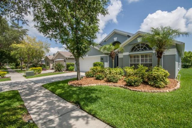 9934 Stockbridge Drive, Tampa, FL 33626 (MLS #T3113283) :: Team Bohannon Keller Williams, Tampa Properties