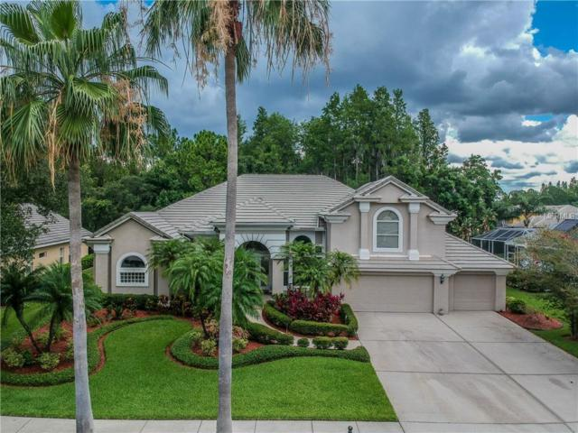 12103 Marblehead Drive, Tampa, FL 33626 (MLS #T3113611) :: The Duncan Duo Team
