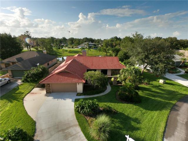 Address Not Published, Land O Lakes, FL 34639 (MLS #T3113882) :: The Duncan Duo Team