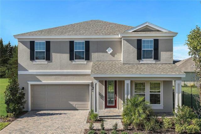 4195 Welling Terrace, Land O Lakes, FL 34638 (MLS #T3114351) :: The Duncan Duo Team