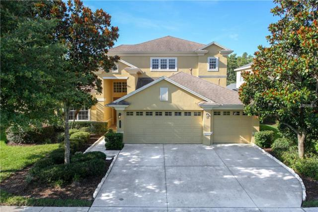 8341 Old Town Drive, Tampa, FL 33647 (MLS #T3115649) :: Team Bohannon Keller Williams, Tampa Properties