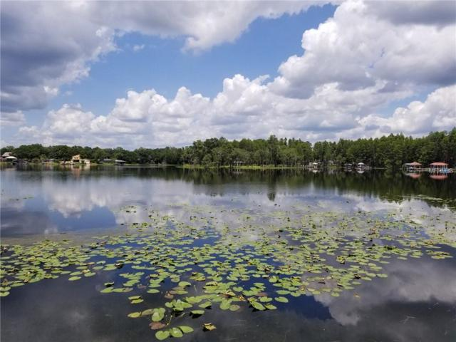 22151 Carson Drive, Land O Lakes, FL 34639 (MLS #T3115716) :: Mark and Joni Coulter | Better Homes and Gardens