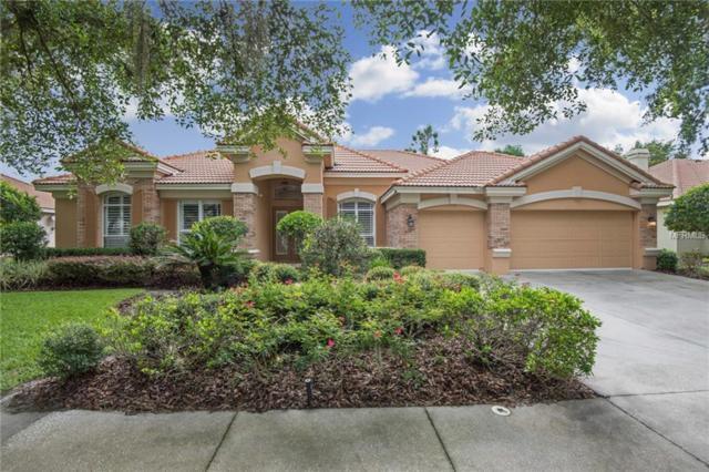 17921 Arbor Greene Drive, Tampa, FL 33647 (MLS #T3116357) :: Team Bohannon Keller Williams, Tampa Properties