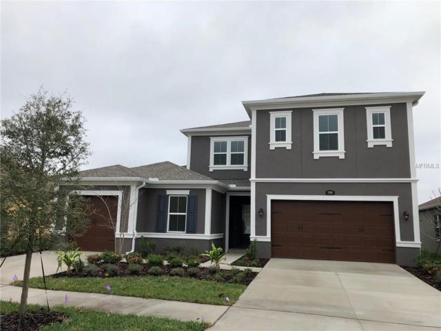17920 Woodland View Drive, Lutz, FL 33548 (MLS #T3118124) :: The Duncan Duo Team
