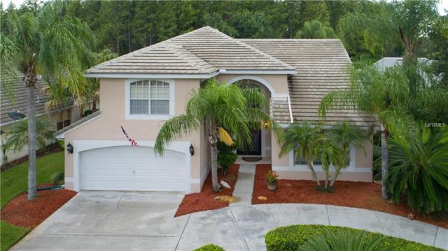 4310 Avenue Cannes, Lutz, FL 33558 (MLS #T3118796) :: The Duncan Duo Team