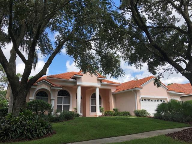 17414 Heather Oaks Place, Tampa, FL 33647 (MLS #T3118808) :: The Duncan Duo Team