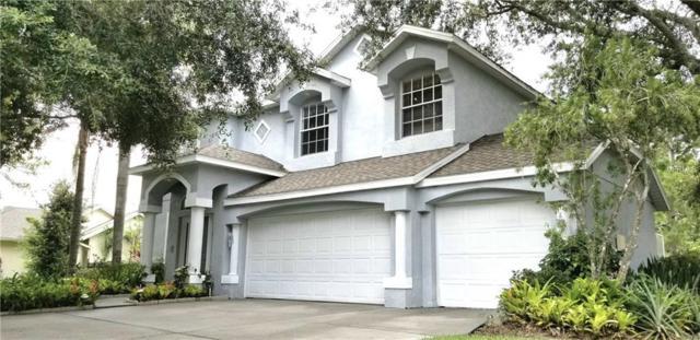 16036 Penwood Drive, Tampa, FL 33647 (MLS #T3119089) :: Team Bohannon Keller Williams, Tampa Properties