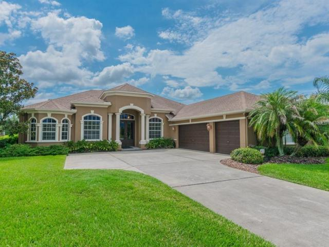 13211 Thoroughbred Drive, Dade City, FL 33525 (MLS #T3119583) :: Team Bohannon Keller Williams, Tampa Properties