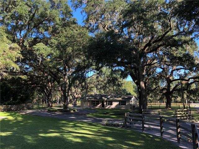 30997 Crocodile Lane, San Antonio, FL 33576 (MLS #T3120127) :: Baird Realty Group
