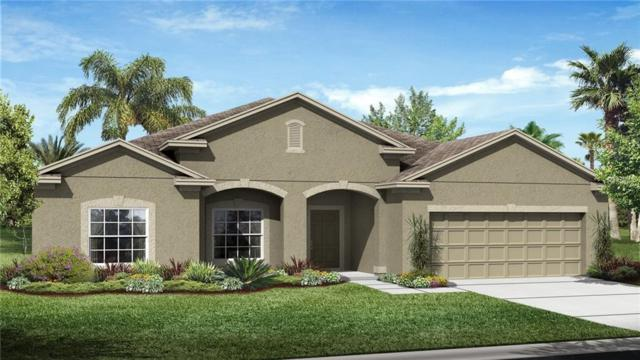 33467 Azalea Ridge Drive, Wesley Chapel, FL 33545 (MLS #T3120793) :: The Duncan Duo Team