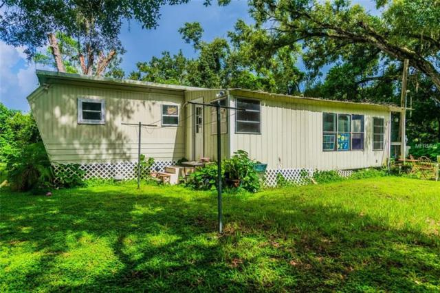 38528 Fir Avenue, Zephyrhills, FL 33542 (MLS #T3121673) :: Griffin Group