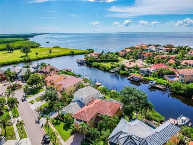 1011 Sonata Lane, Apollo Beach, FL 33572 (MLS #T3122030) :: Revolution Real Estate