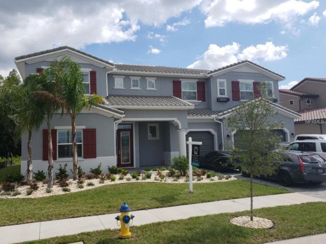 29104 Picana Lane, Wesley Chapel, FL 33543 (MLS #T3122804) :: Team Bohannon Keller Williams, Tampa Properties