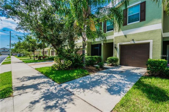 2809 Lantern Hill Avenue, Brandon, FL 33511 (MLS #T3122829) :: The Duncan Duo Team