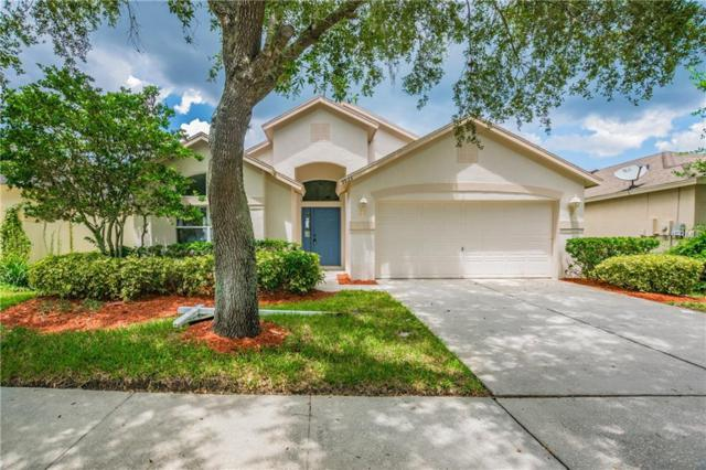 9923 Stockbridge Drive, Tampa, FL 33626 (MLS #T3123899) :: The Duncan Duo Team