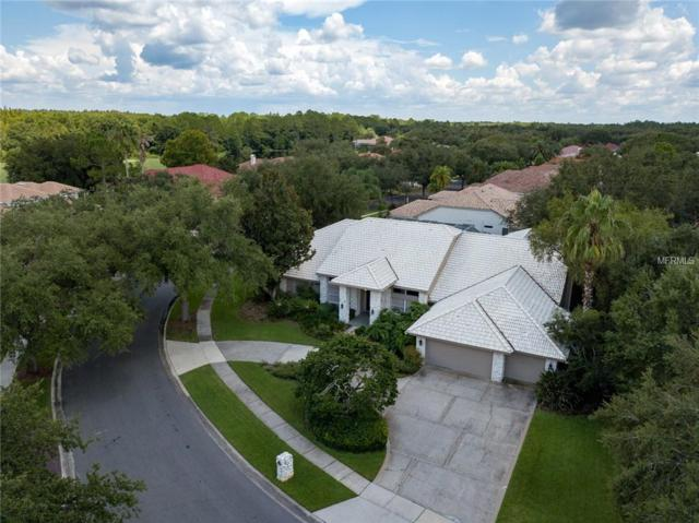 8923 Magnolia Chase Circle, Tampa, FL 33647 (MLS #T3124083) :: The Duncan Duo Team