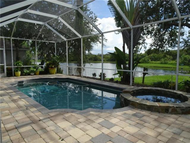 18126 Pheasant Walk Drive, Tampa, FL 33647 (MLS #T3124221) :: Team Bohannon Keller Williams, Tampa Properties