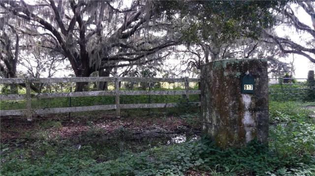 917 Country Oaks Lane, Lakeland, FL 33810 (MLS #T3124423) :: Griffin Group