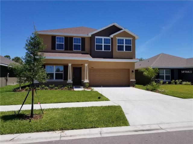 14448 Haddon Mist Drive, Wimauma, FL 33598 (MLS #T3124438) :: Team Bohannon Keller Williams, Tampa Properties