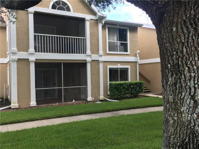 9481 Highland Oak Drive #810, Tampa, FL 33647 (MLS #T3125431) :: Delgado Home Team at Keller Williams