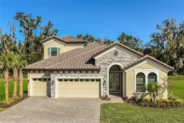 21795 Amelia Rose Way, Land O Lakes, FL 34637 (MLS #T3125671) :: The Duncan Duo Team