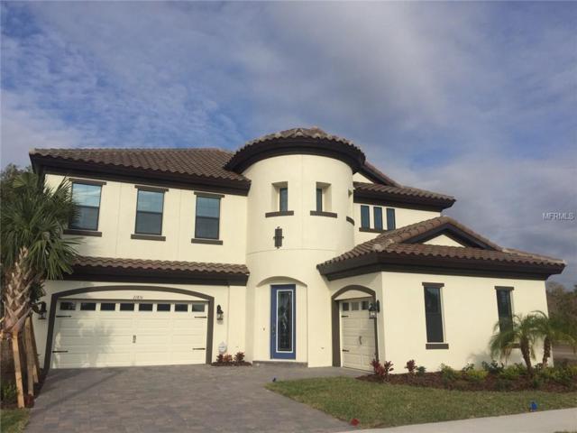 21831 Amelia Rose Way, Land O Lakes, FL 34637 (MLS #T3125677) :: Team Suzy Kolaz