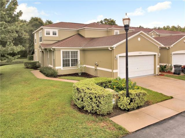 11027 Blaine Top Place, Tampa, FL 33626 (MLS #T3126116) :: The Duncan Duo Team
