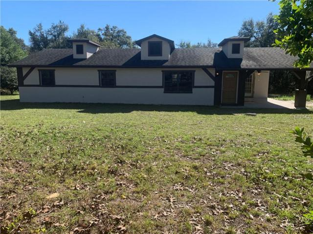 17130 Helen K Drive, Spring Hill, FL 34610 (MLS #T3126811) :: Griffin Group