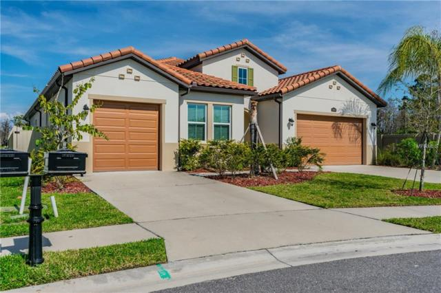 18103 Leafmore Street, Lutz, FL 33548 (MLS #T3128834) :: Mark and Joni Coulter   Better Homes and Gardens