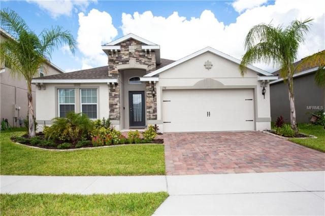 156 Whirlaway Drive, Davenport, FL 33837 (MLS #T3129132) :: The Light Team
