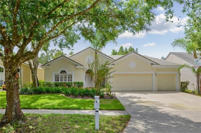 4943 Ebensburg Drive, Tampa, FL 33647 (MLS #T3129140) :: The Duncan Duo Team